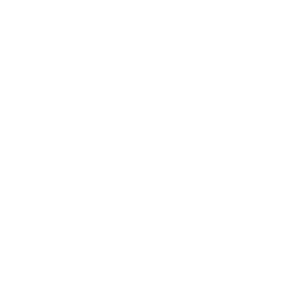Culture Builds Florida